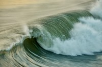 Cameron Seals - Local Lens