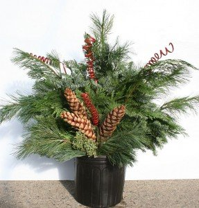 Evergreen branches and decorations in a standard nursery pot with soil