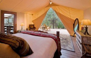 "Pitch a tent in the backyard and bring the bed and sofa out there? You may be a candidate for ""Glamping"""