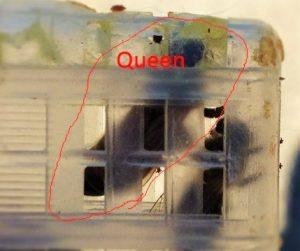 The Queen Bee!
