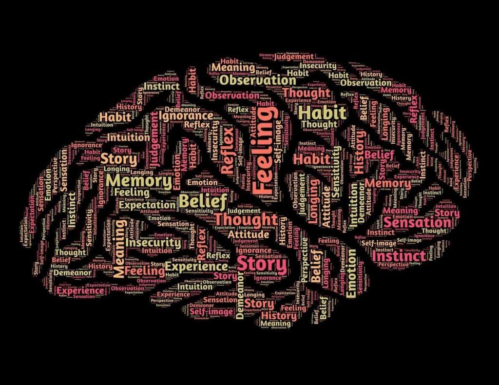 سعة ذاكرة دماغ الإنسان