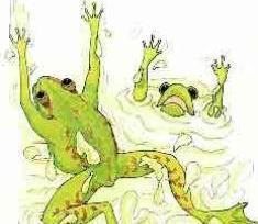 two frogs myth and management