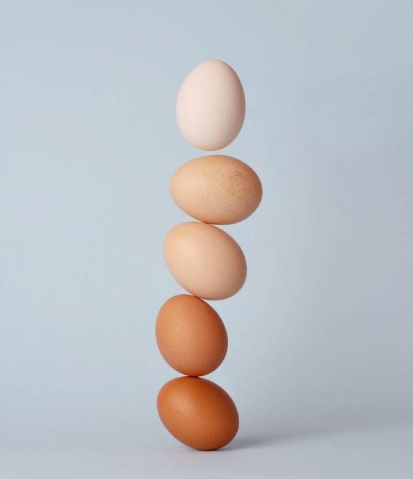 eggshell paint finish