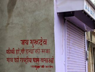 "This graffiti is a message from Maharaj ji Sajjan who says that ""cow killers should be hanged to death and make the cow the national animal of India."""