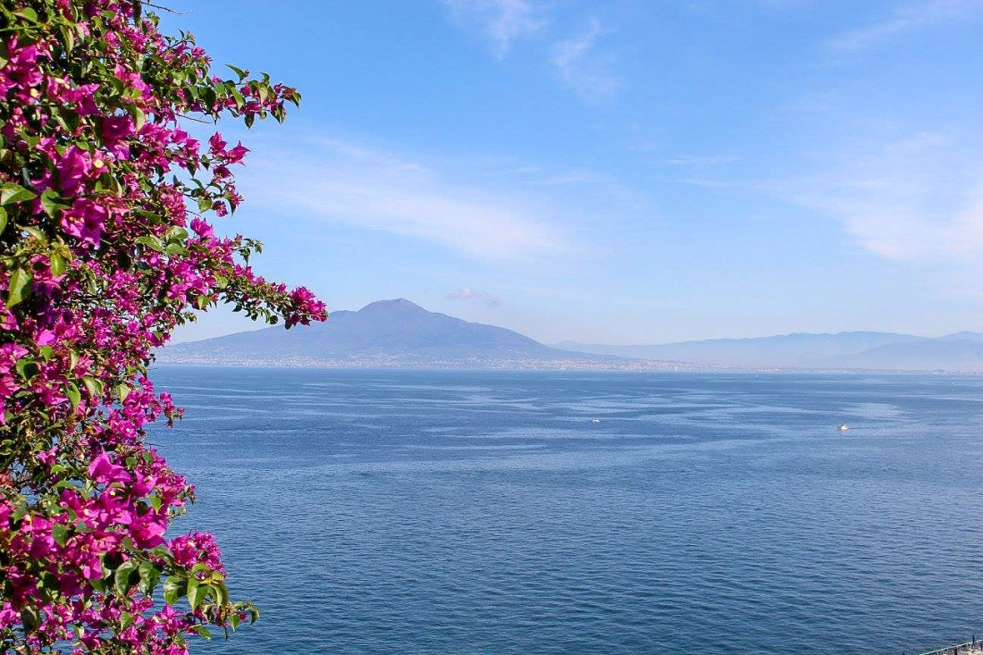 A view of Mount Vesuvius with flowers at the side