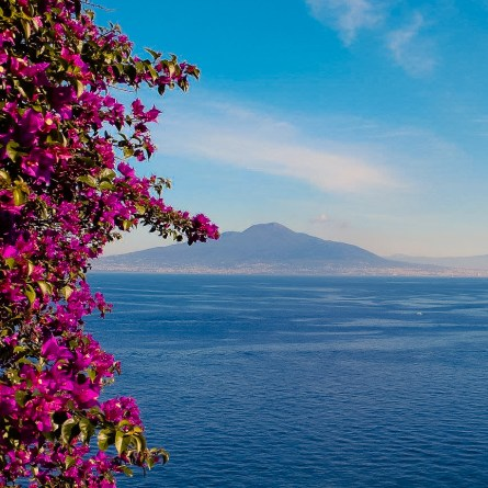 The view of Vesuvius from Sorrento, with purple flowers in the foreground. Certainly one of the most Instagrammable spots on the Amalfi Coast