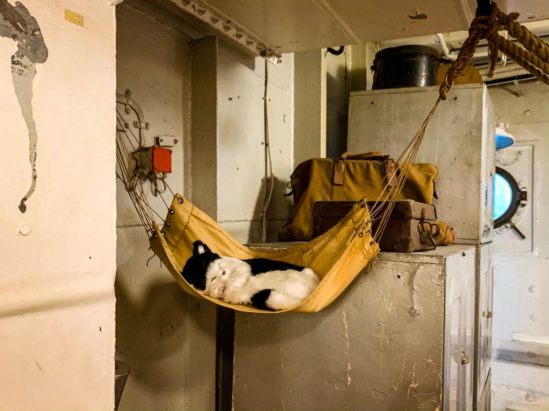 A small hammock on board HMS Belfast near London Bridge, showing a recreation of Frankenstein, the ship's cat