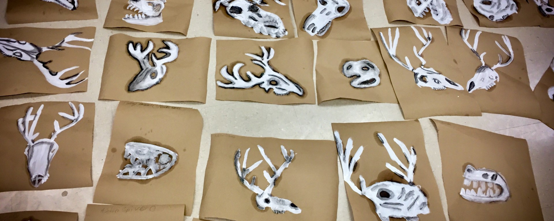 How to help your art students paint from observation. Art education resources and lessons at That Art Teacher. Deer skull paintings by 5th grade students.