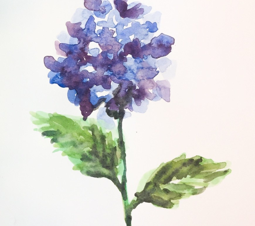 This time lapse painting shows how a few colors and repeated petal shapes create a simple hydrangea.