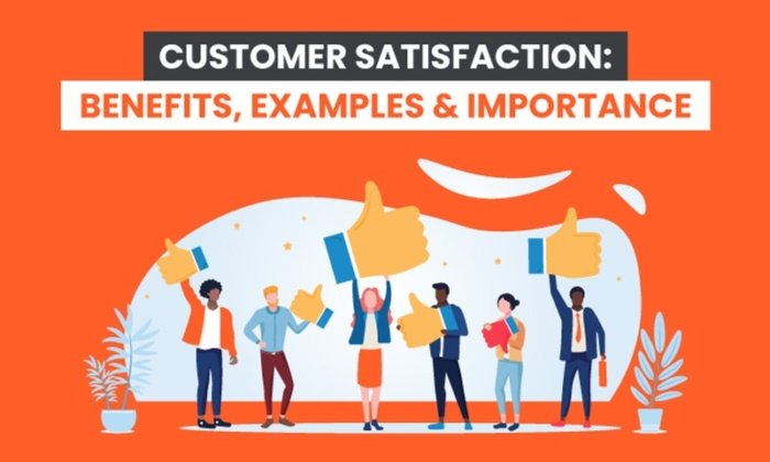 Customer Satisfaction: Benefits, Examples & Importance