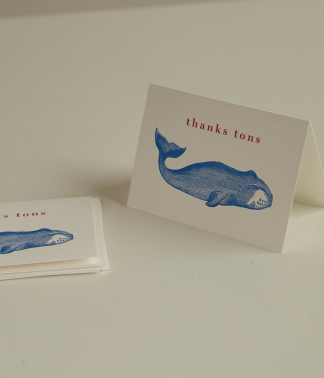 Archivist Letterpress Greeting Card | Pack of 5 Thank You Cards