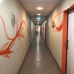 Wombat's Hostel Review