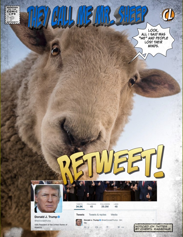 Trump tweets WE 217 Retweets in 5 mins