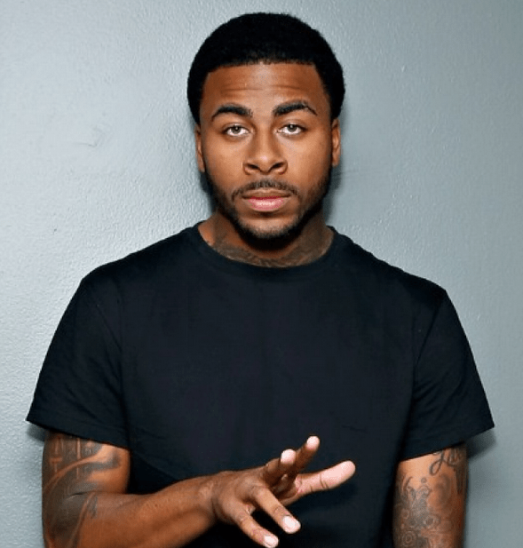 Image result for sage the gemini