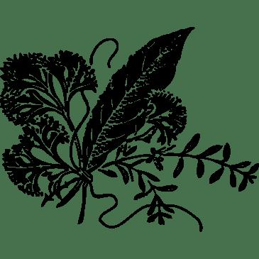 Herbal Options!