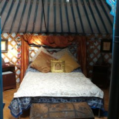 Idea #8: Stay in a yurt