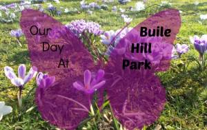 Buile Park Title