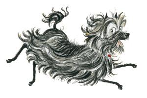 Hairy Maclary image