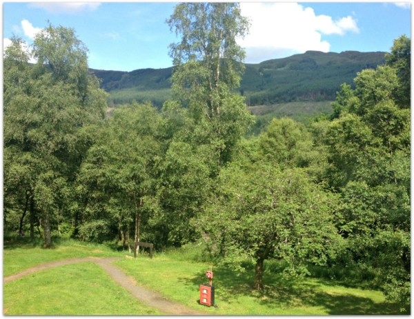 View from our Forest Holidays cabin in Strathyre