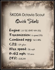 Scout quick stats