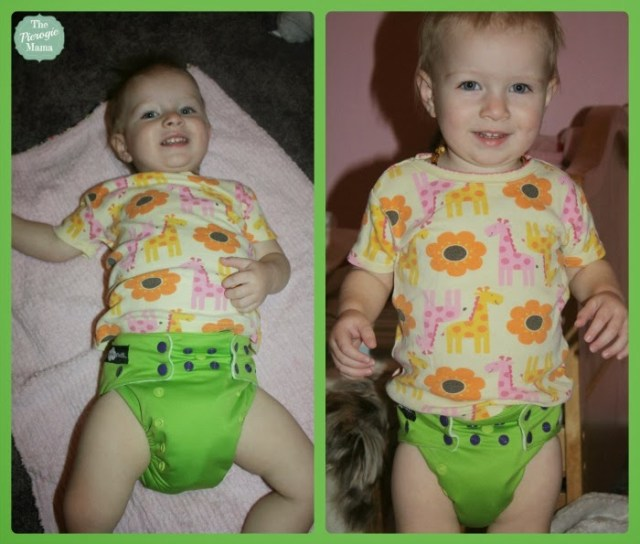 Meet The Funky Fluff Bamboo Fusion Cloth Diaper 2.0 & A 10