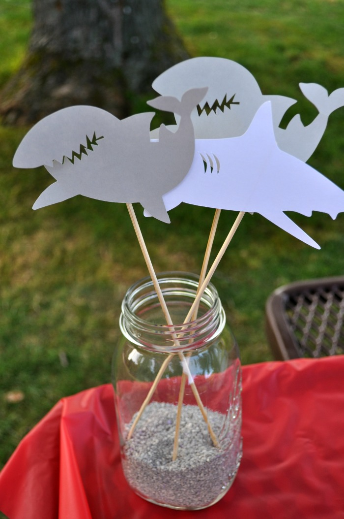 cameo shark