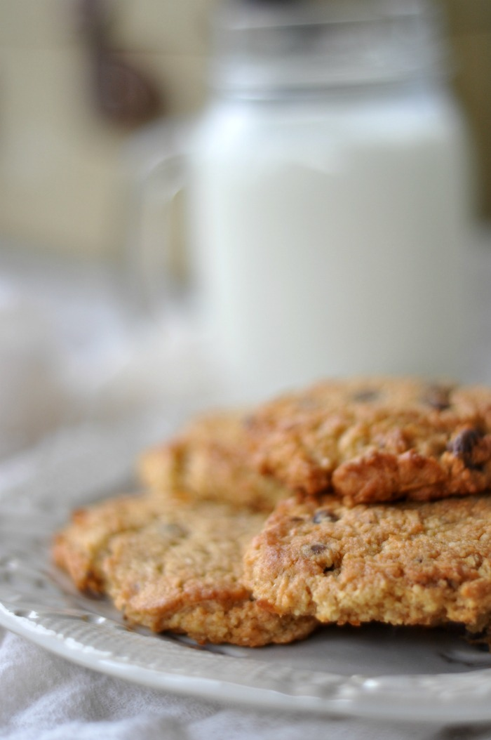 gluten free macaroon cookies