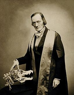 Portrait of Sir Richard Owen, Founder of the Natural History Museum