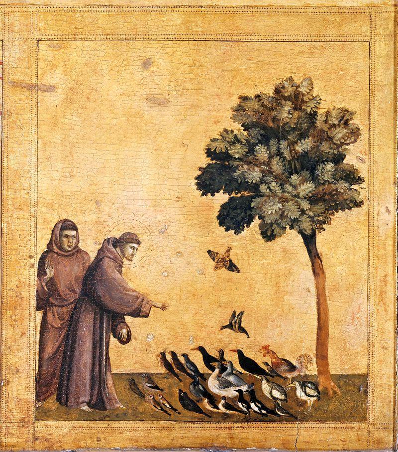 st francis feeding the birds