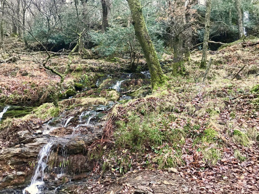 Overal in Ierland vind je beekjes en watervallen.