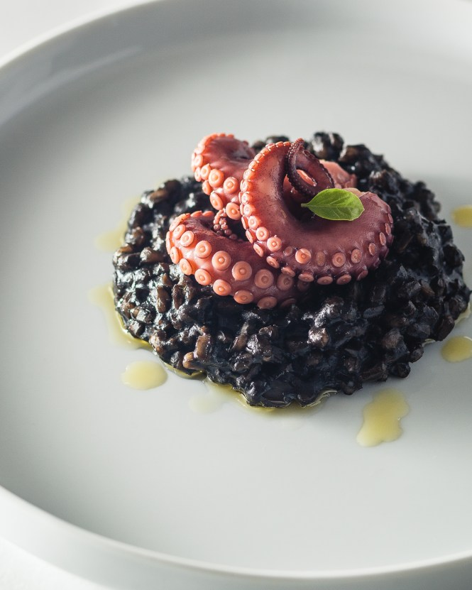 octopus and squid in farro-sotto