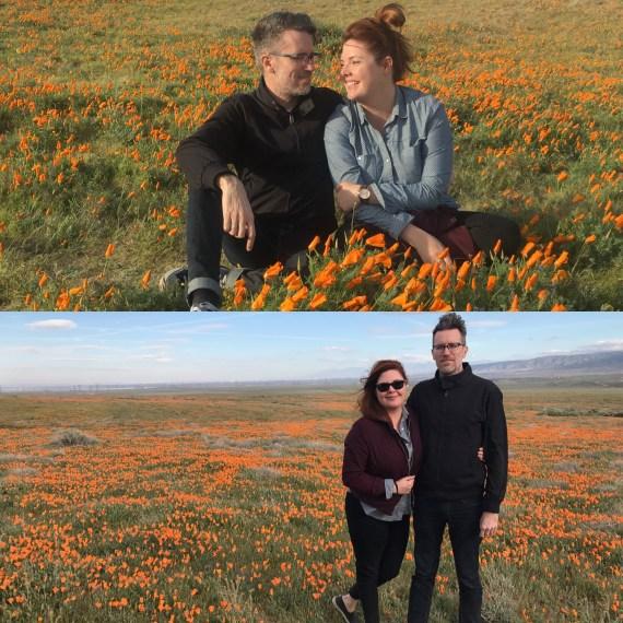 Super bloom, california, poppies, taylor lautner