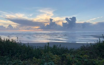 olympic peninsula, travel, forks, la push, sequim, port anngeles