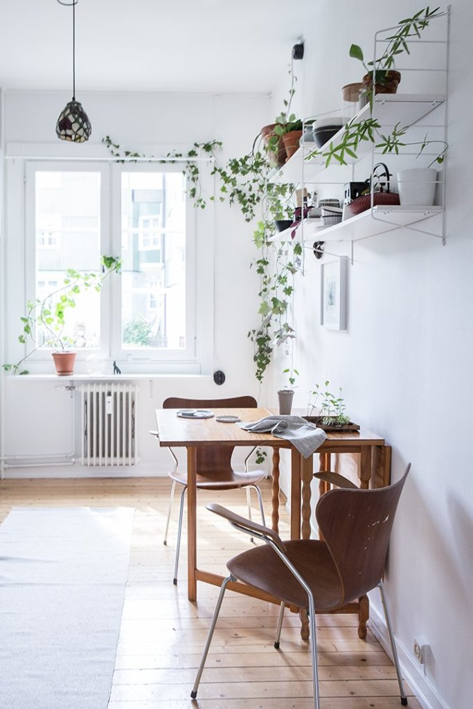 scandinavian_home_interior_plants_6