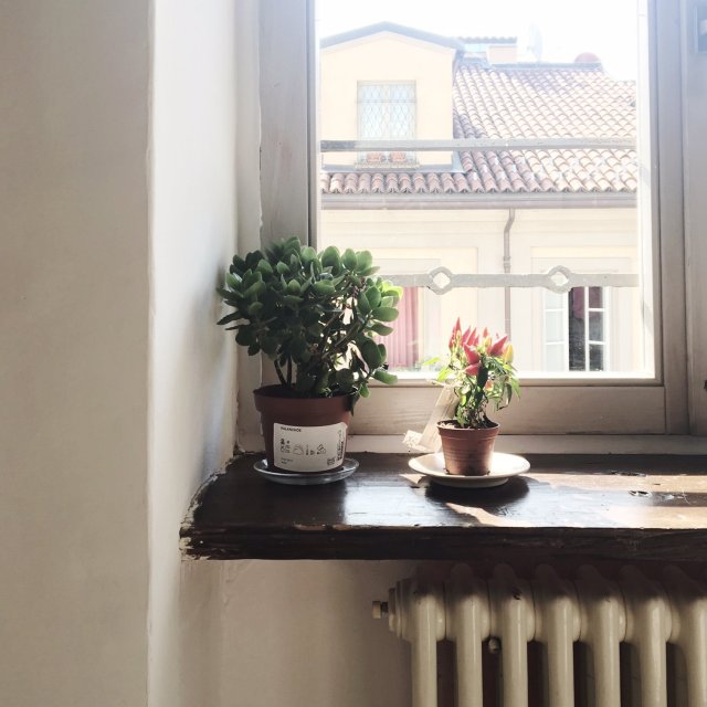 airbnb_torino_italy_interior_details5