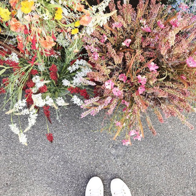 scandinavian_feeling_autumn_mood_colours_flowers