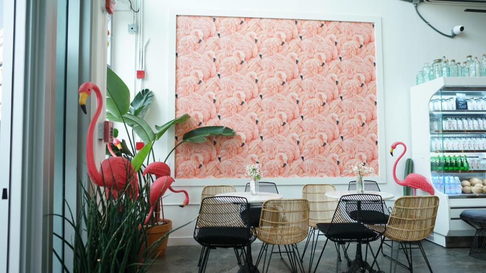 Dream Flamingo.jpg