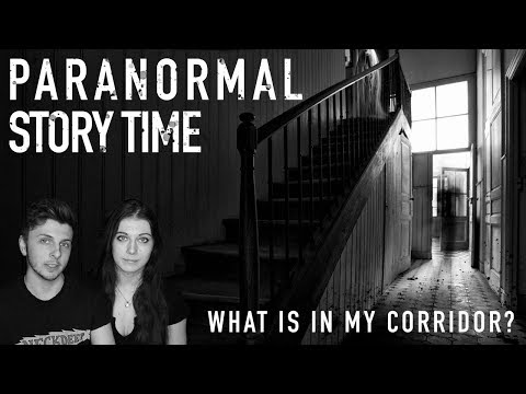 Is My Cat Seeing Ghosts? – Paranormal Storytime