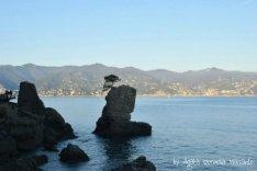 ligurian shore