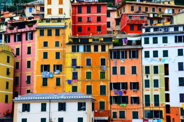 houses,camogli,liguria,wlochy