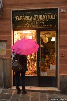 entrance turaccioli shop