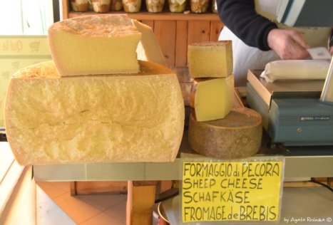 different types of cheese from Varese Ligure