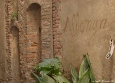 Albenga on the wall