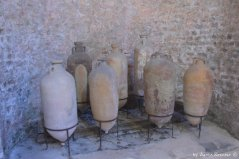 roman amphoras