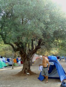 campsite liguria