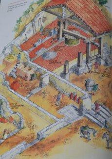 preparing oil by Romans