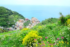 Manarola view from trail to Volastra