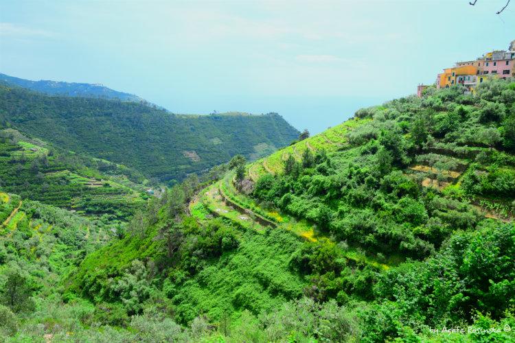 valley around Volastra