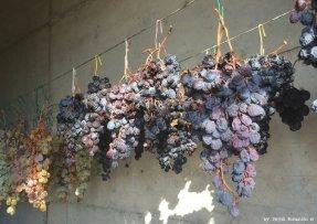 drying grapes for SciacchetràRiomaggiore