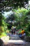 nature of Tino island